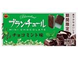ブルボン ブランチュールミニチョコミント 12個