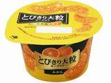 北海道乳業 とびきり大粒ヨーグルトみかん 120g